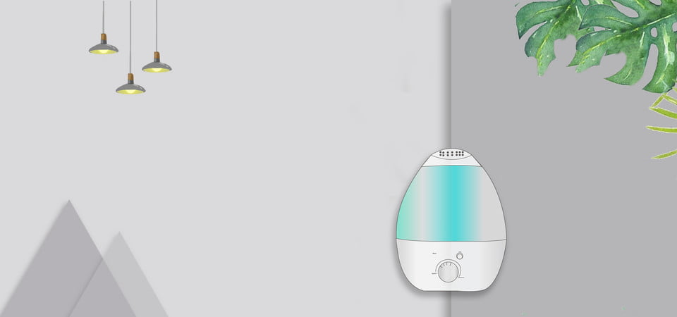 Best Humidifier For Coughs Reviews 2020